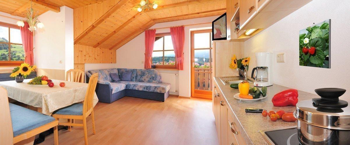 bauernhof pustertal ferienwohnungen in terenten leimgruberhof. Black Bedroom Furniture Sets. Home Design Ideas